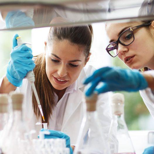 Bioengineering: International Perspectives on Bioethics