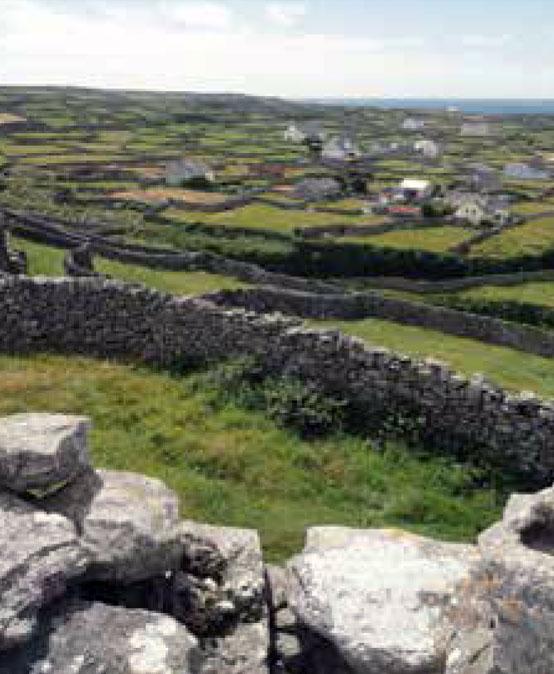 Inglés en casa del profesor/a en Irlanda